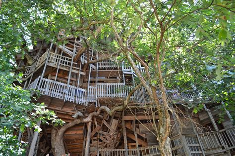 world s biggest tree house 404 not found