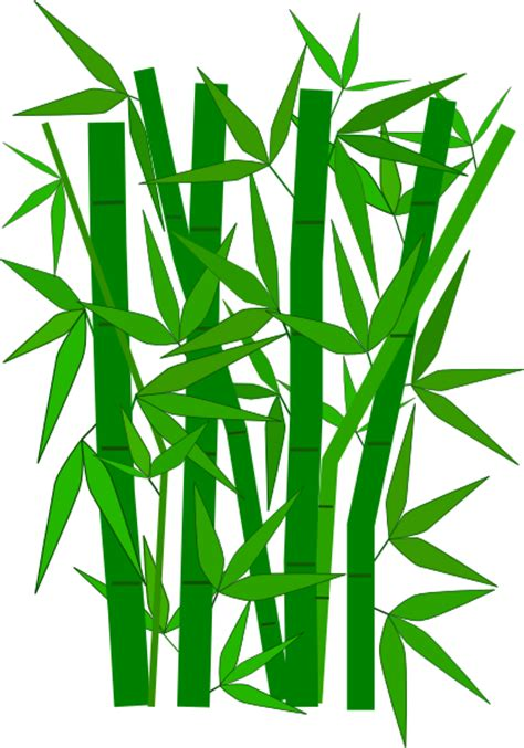 Drawing Of A Bamboo Tree by Bamboo Tree Clip At Clker Vector Clip