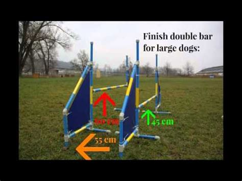 how to start agility for dogs how to get started with agility breeds picture