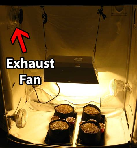 grow tent exhaust fan how to set up grow tents for cannabis grow weed easy