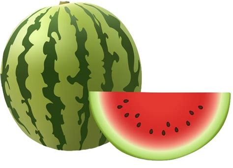 Ittaherl Clip 1 Pcs Watermelon 77 best watermelon images on watermelon silhouette design and food clipart