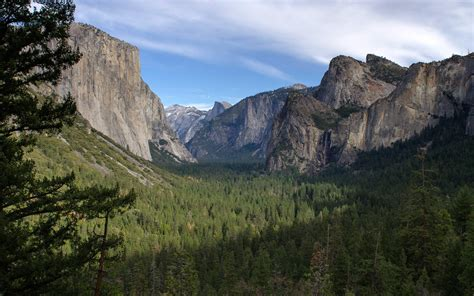 airbnb yosemite the best airbnb rentals for visiting america s national