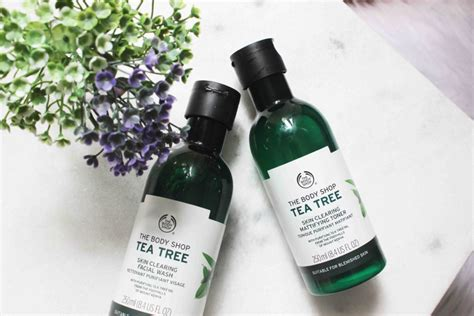Tea Tree Gel The Shop resenha tea tree the shop gel e t 244 nico para peles