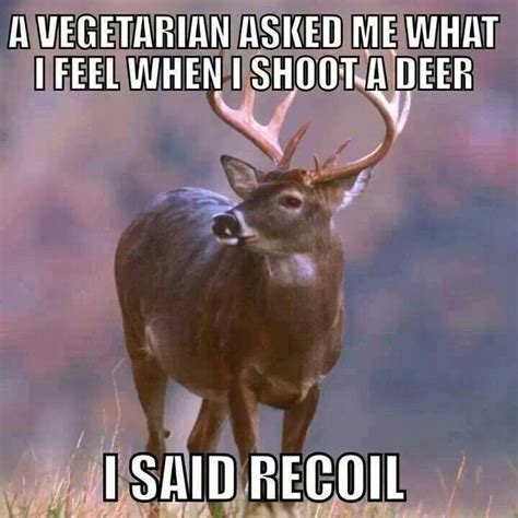 Deer Hunting Meme - funny deer hunting memes 28 images 56 best hunting