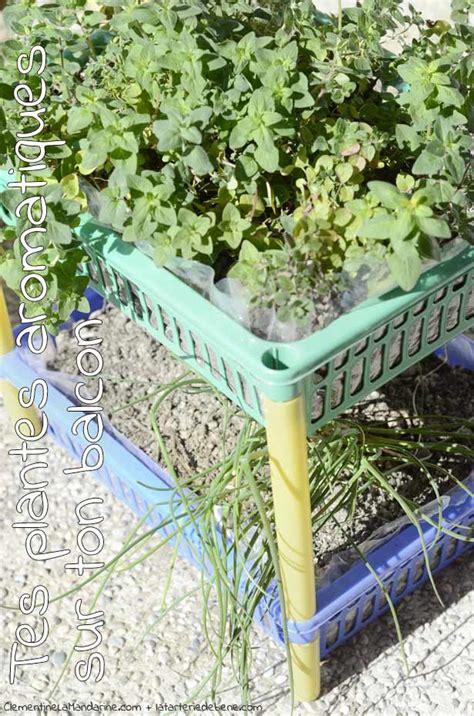 Incroyable Jardin Aromatique #3: 8-plantes-aromatiques-sur-balcon-clementine-la-mandarine.jpg