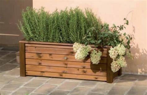 vasche per piante da terrazzo vasche per il terrazzo tecniche di giardinaggio vasche
