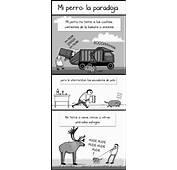 Mi Perro La Paradoja  Corgis Spain