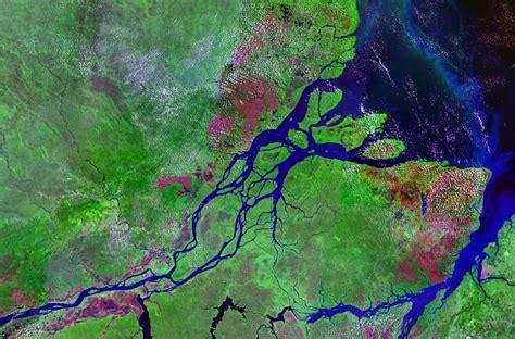 amazon river river world the amazon river
