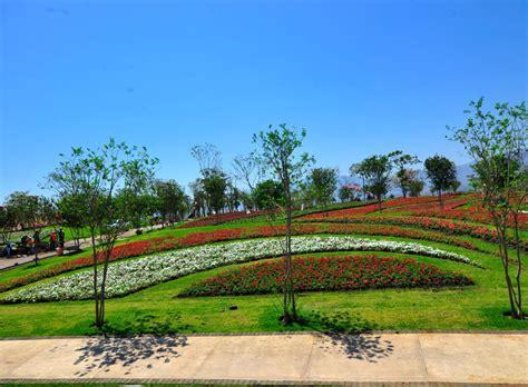 imagenes jardines de mexico jardines de m 233 xico en tequesquitengo morelos 8 abanico de