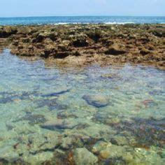 bathtub beach snorkeling 1000 images about stuart florida on pinterest florida