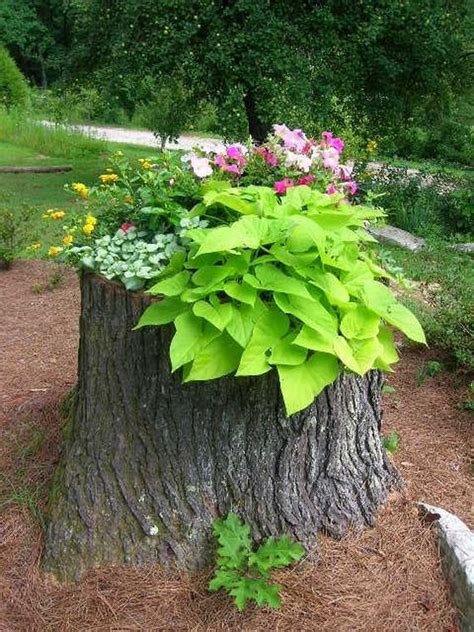 Tree Stump Decor by How To Recycle Tree Stumps For Garden And Yard Decorations