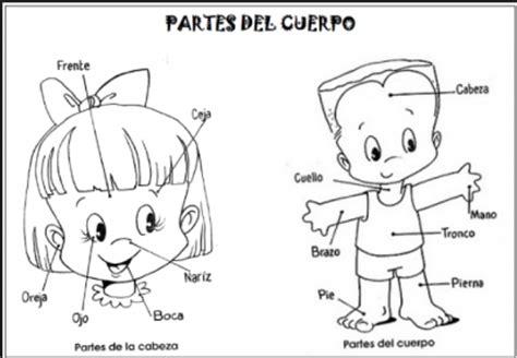 imagenes infantiles del cuerpo humano dibujos de partes del cuerpo humano para ni 241 os peque 241 os