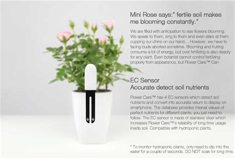 Custom White Flower Xiaomi Mi 2 3 4 5 Redmi 1s 2s Note Note2 original xiaomi mi flowerpot original plants monitor