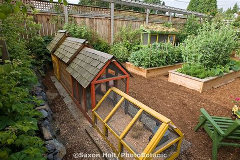 Garden City Coop by Mb Architecture Design The Funky Chicken Coop Part 2