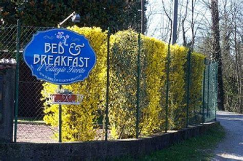 ciliegio fiorito bed and breakfast il ciliegio fiorito somma lombardo
