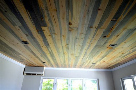Carpet Ceiling by Blue Beetle Pine Floors And Beetle On