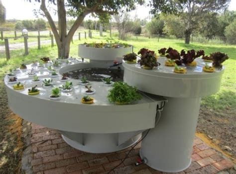 backyard growing system 18 best images about garden aquaponics on pinterest