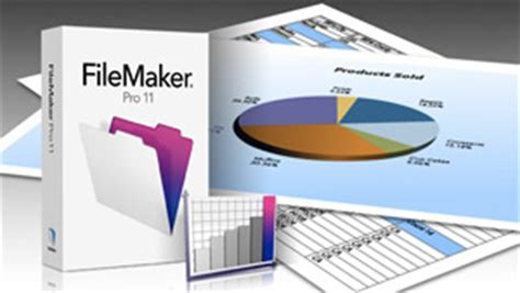 login layout filemaker filemaker pro goes to 11 admits people like spreadsheets