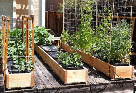 Portable Tomato Planter by Inside Green Portable Micro Garden Pmg