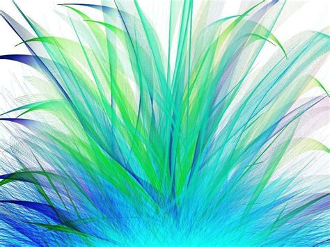 peacock background peacock backgrounds wallpaper cave