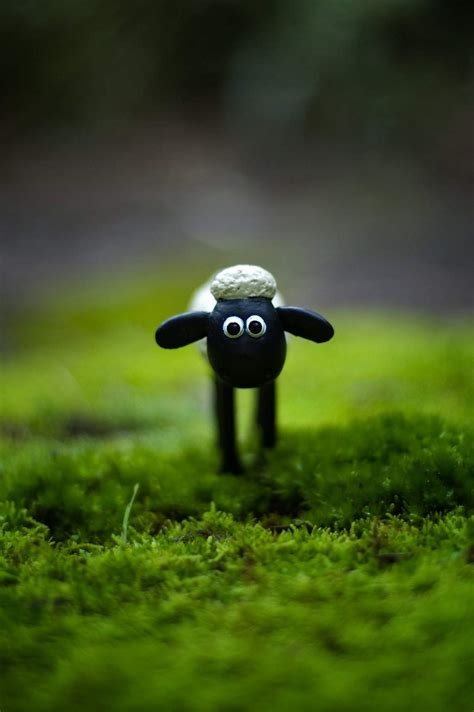 Shaun The Sheep 7 1 shaun alone