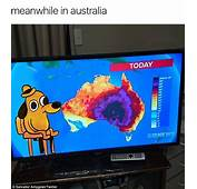 Australians Share Memes About Blistering Heatwave  Daily
