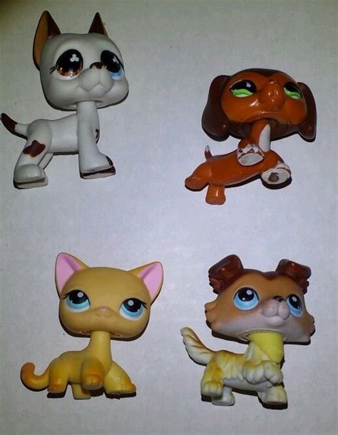 lps dogs and cats lps cat vs