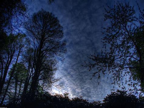 manana azul fonditos por la ma 241 ana azul paisajes bosques