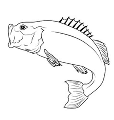 coloring pages flatfish silhouette of sea and river fish royalty free vector image