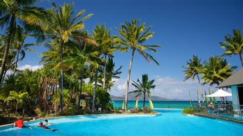 hamilton island holidays find cheap  packages