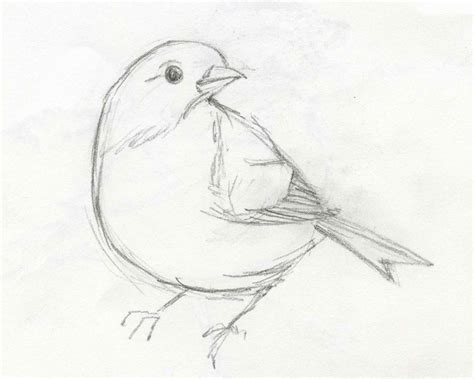 Drawings Easy by Easy Drawing Sketch Pencil Sketches Easy Best Sketches