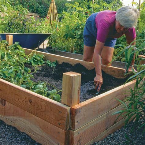 vasche per orto costruire un orto rialzato cassoni vasche per orto