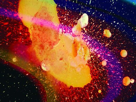Radiohead In Rainbows by The Harmless Musician Type Stanley Donwood S For