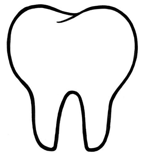 template of a tooth smiles dental center 22 photos general dentistry