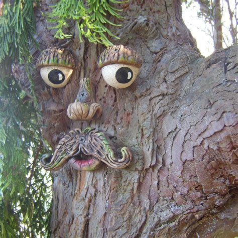 tree faces tree faces unique funky and fun great gift by