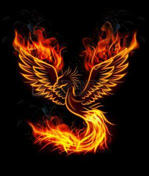 phoenix tattoo background phoenix rising illustration of fire burning phoenix bird