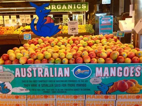 calypso mangoes to make in us