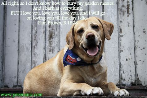 You Till I Die quotes pets manic page 2
