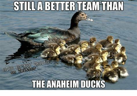 Anaheim Ducks Memes - 25 best memes about anaheim ducks anaheim ducks memes