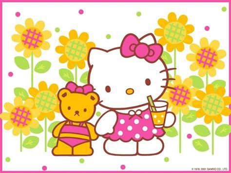 hello kitty wallpaper summer hello hello kitty hello kitty summer anime hello kitty
