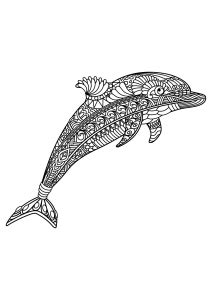 dolphins coloring pages  adults