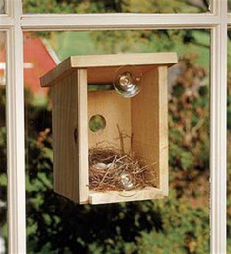 bird house attached to window 1000 images about bird houses on pinterest birdhouses
