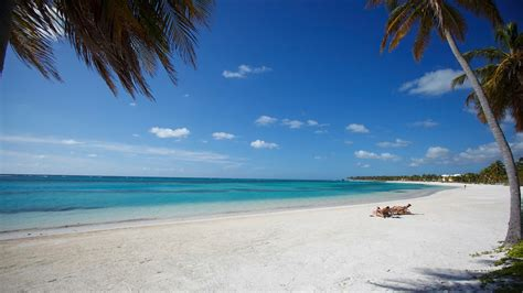punta cana vacation packages book punta cana trips travelocity