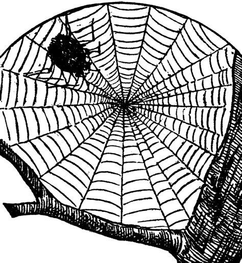 cobweb clipart