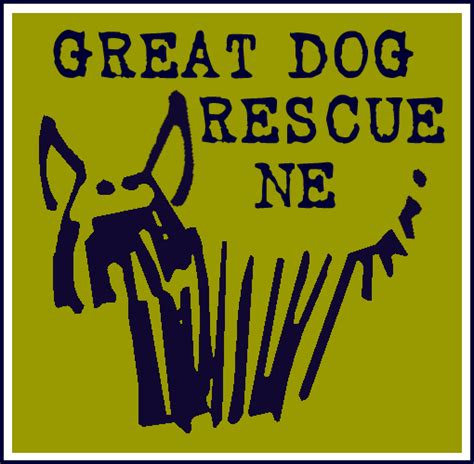 great rescue new adoption fee of 400 for dogs