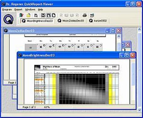 format file qrp drregener com quickreport viewer