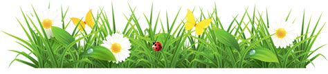 images free grass clipart images free gclipart