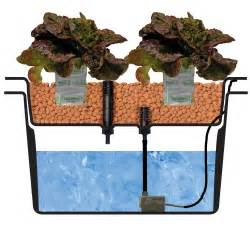 hydroponic systems nft tables aeroponics drip feed