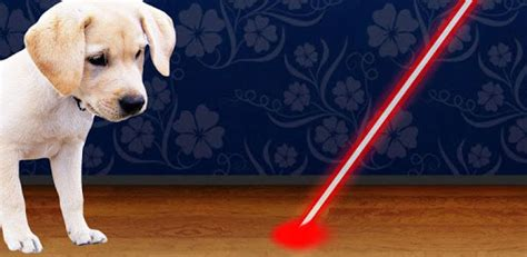 dogs and laser pointers laser pointer for dogs for pc