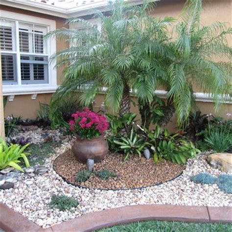 landscape palm tree design ideas pictures remodel and
